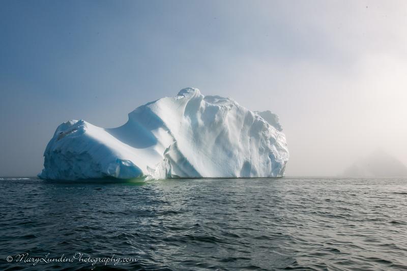 Antarctic-6