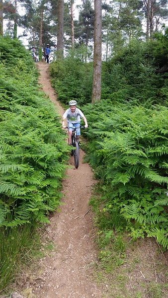 Mountain Biking Haldon Woods