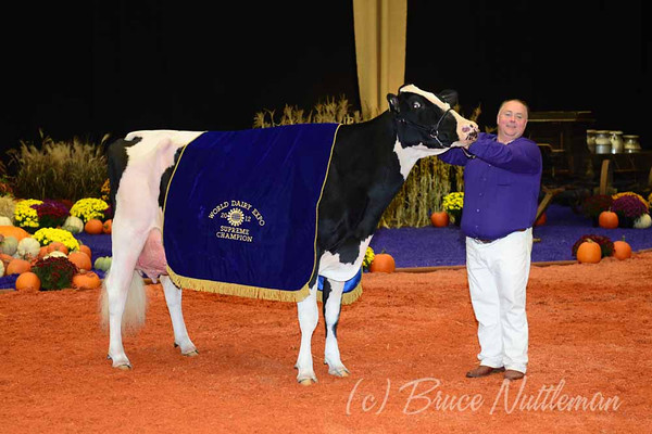 World Dairy Expo, Saturday, October 6th, 2012