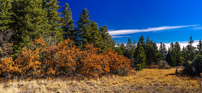 _DSC4529 Panorama adj.jpg