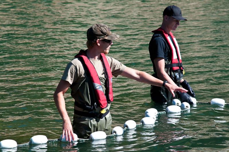 Phillips River 2011-78.jpg