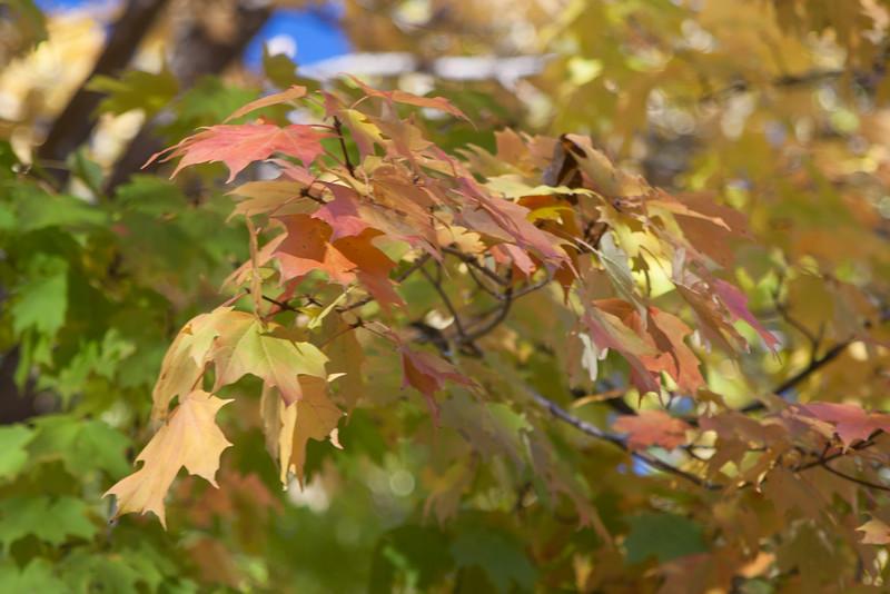 20121021-2012-10-2116-22-2913200.jpg