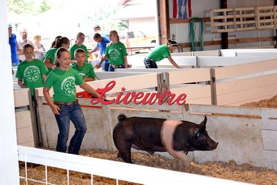 Livestock Premium Auction 2012