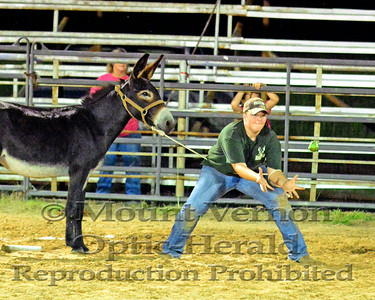 2014 Franklin County Sheriff's Posse Donkey Baseball