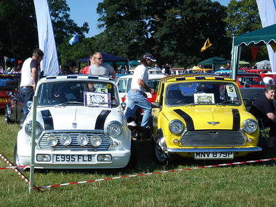 Mini In The Park 2005