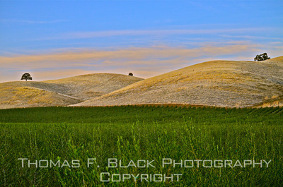 Landscapes ~  Images from Golden State, New England, South, Southwest