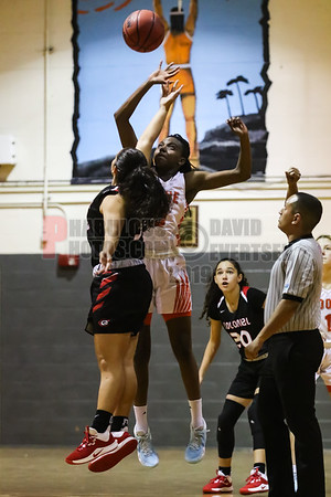 Girls Varsity Basketball  - 2019