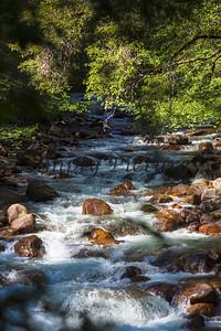 Yosemite007