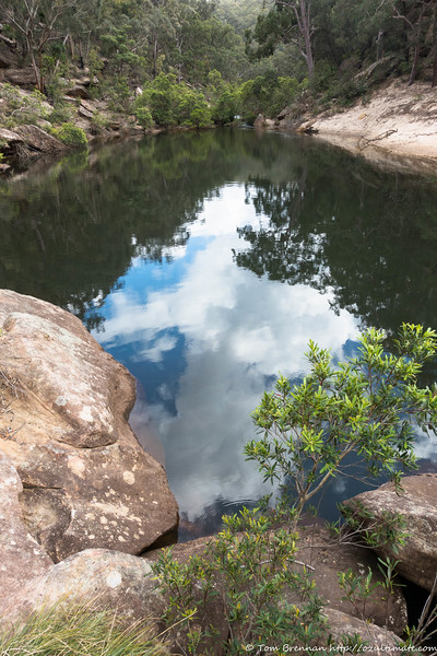 Reflections in Glenbrook Creek