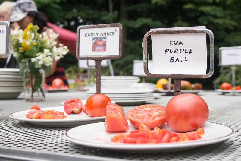 heirloom tomatoes 5.jpg
