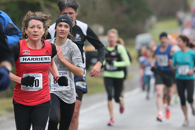 2014 Harriers Pioneer 8K Road Race