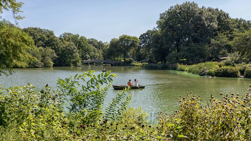 Boating on 'The Lake' in Central Park