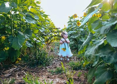Brentley & Oaklyn | 2019 Sunflower Mini