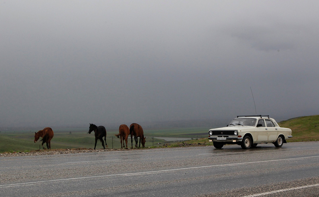. A car drives past horses, standing at the edge of a road, outside the Chechen capital Grozny April 24, 2013. The naming of two Chechens, Dzhokhar and Tamerlan Tsarnaev, as suspects in the Boston Marathon bombings has put Chechnya - the former site of a bloody separatist insurgency - back on the world\'s front pages. Chechnya appears almost miraculously reborn. The streets have been rebuilt. Walls riddled with bullet holes are long gone. New high rise buildings soar into the sky. Spotless playgrounds are packed with children. A giant marble mosque glimmers in the night. Yet, scratch the surface and the miracle is less impressive than it seems. Behind closed doors, people speak of a warped and oppressive place, run by a Kremlin-imposed leader through fear.  Picture taken April 24, 2013.   REUTERS/Maxim Shemetov