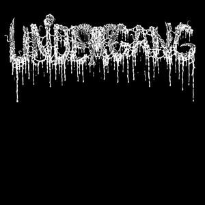 UNDERGANG (DK)