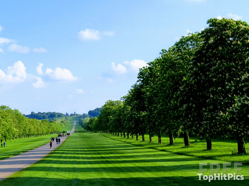 The Long Walk in Windsor Great Park, Windsor, Berkshire, England