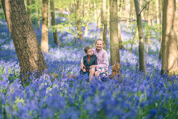 Bluebell Mini-shoot