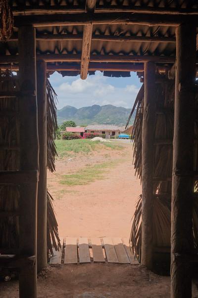 Tobacco drying, Viñales Valley