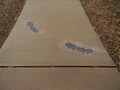 concrete path with embedded ant sculpture