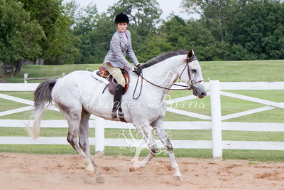 AA/CH Hunters Under Saddle
