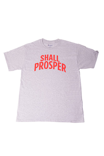 Shall Prosper Grey T Shirt 1.jpg