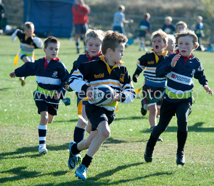 Under 8's, Franklin's Gardens, 15 October 2011