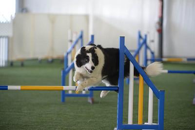 Sunday Performance Speed Jumping