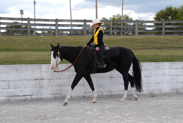 Beginning Pleasure/Equitation - Oct 3