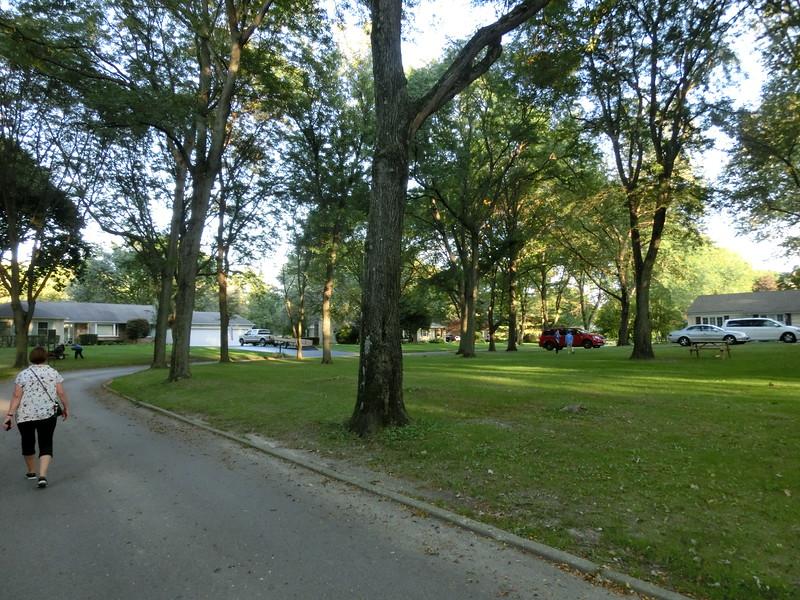 Husen ligger som i en park