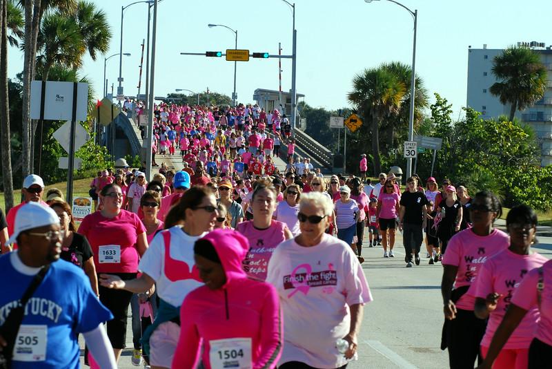 2014 Making Strides Against Breast Cancer in Daytona Beach (299).JPG