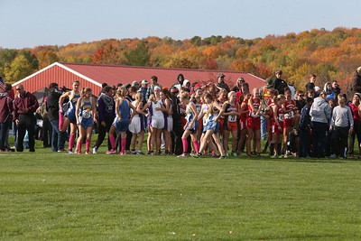 Division One Girls - 2013 Upper Peninsula XC Finals