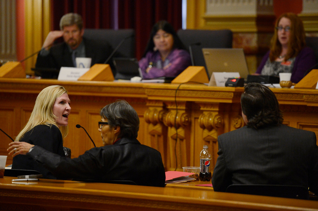 . Denver, CO. - January 23: Allied attorney Nicolle H. Martin making a point about creative expression as speech with Senator Pat Steadman, D-Denver, as she gives testimony to the Senate Judiciary Committee with Senator Lucia Guzman D-Denver on Senate Bill 11 at the Denver State Capitol. Martin spoke against the bill would allow gay couples to form civil unions.  Denver, Colorado January 23, 2013. (Photo By Joe Amon / The Denver Post)