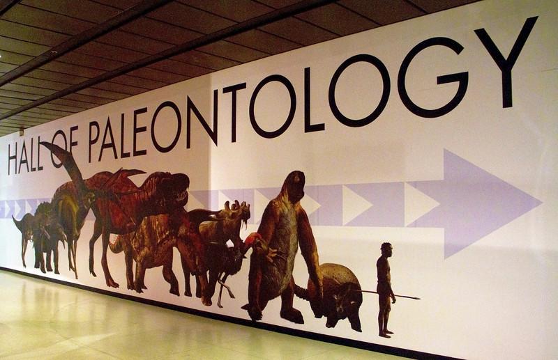 paleontology.jpg