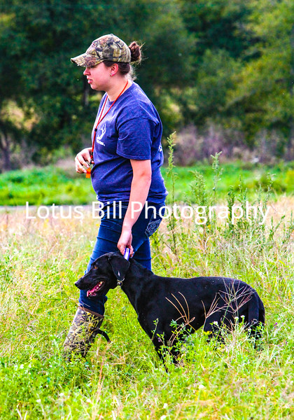 Courtney 2nd Dog