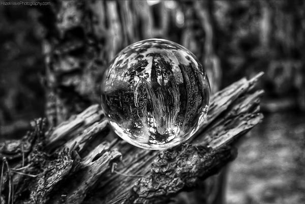 Look Into My Crystal Ball