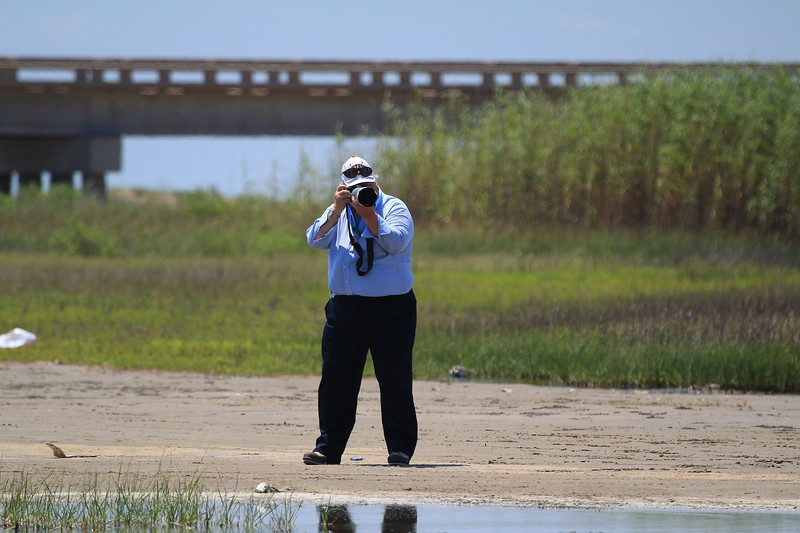 ZZReddish Egrets, Galveston, 6-7-13, 185R, crop LTROOM, SMALL.jpg