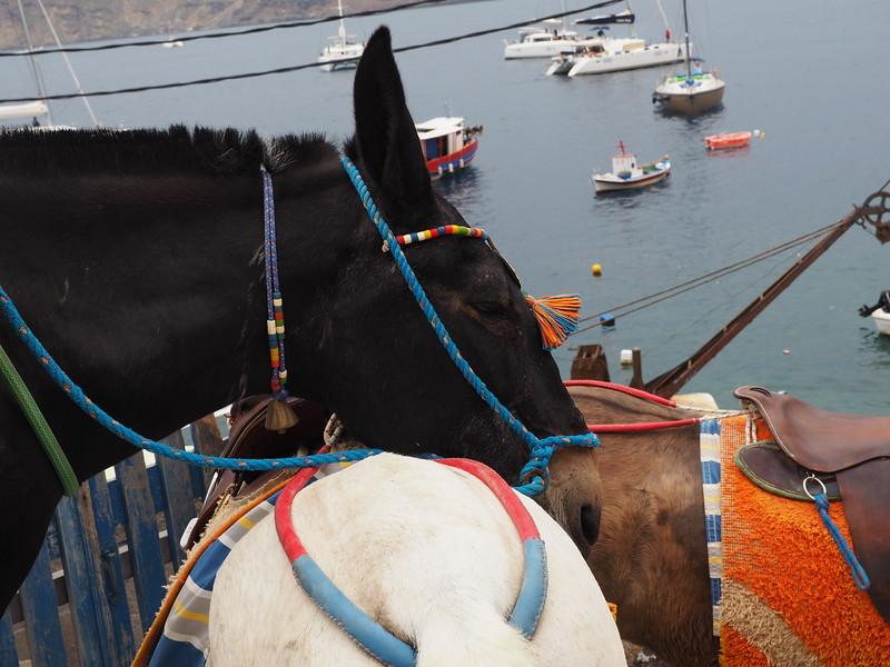 Santorini - 2-17558.jpg