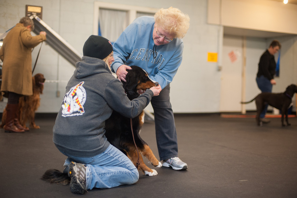 . Linda Switalski works with classmate Andrea Mata (left) at the Mt. Pleasant Michigan Kennel Club\'s Canine Good Citizen class. (Sun photo by Holly Mahaffey/@hollymahaffey)