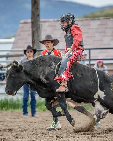 Junior Steer Riding DMC 2019