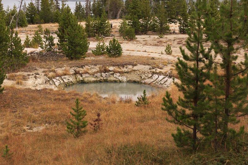 West Thumb Geyser Basin 010