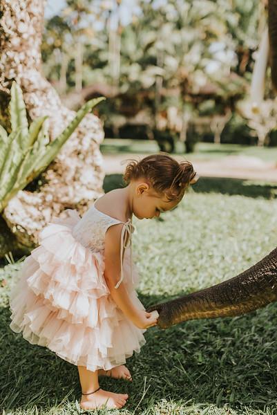 VTV_family_photoshoot_elephants_Bali_ (37).jpg