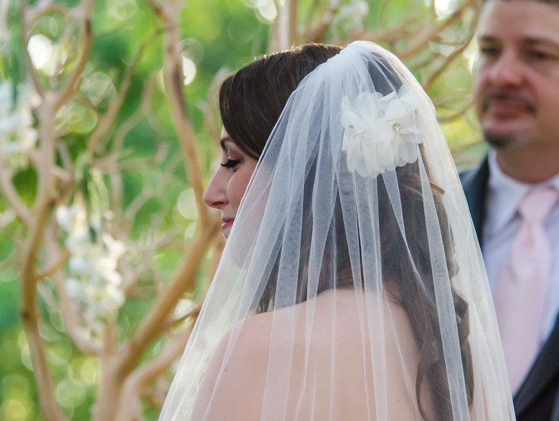 Andrew & Stefani Wedding Ceremony 2014-BJ2_9812.jpg