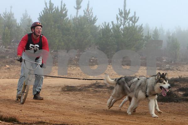 Kowen 2009 - 2 Dog Race, Saturday