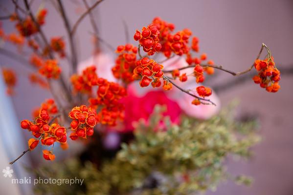 2011 Annual Flower Show Miraido