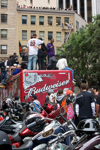 SF Giants - This buds for you.