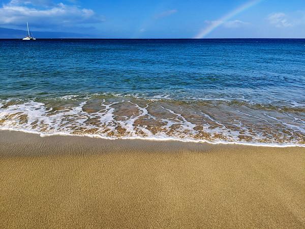 2020 Maui