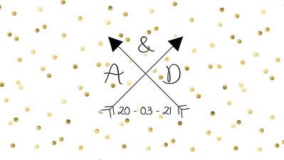 20.03 Ash & Danielle's Wedding