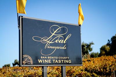 Leal Vineyards Hollister