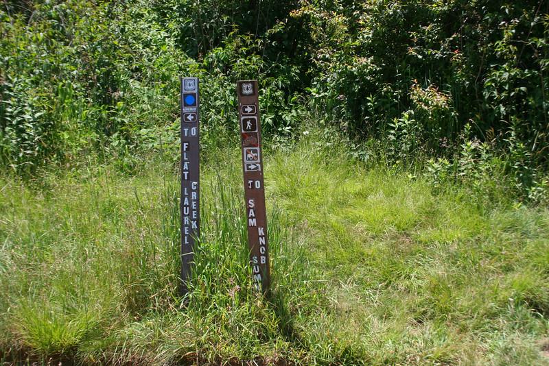 Sam Knob-Sam Knob Summit Trail Junction