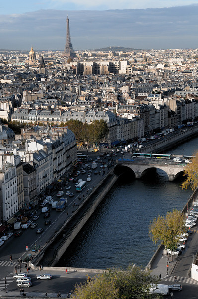 The view from the top of Notre Dame de Paris.
